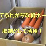 普段は捨ててしまいがち?!アレを使って野菜収納